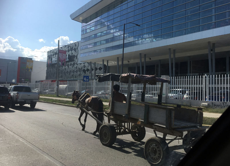 Highway horse & carriage
